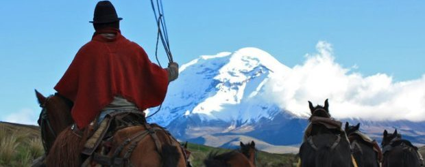 chimborzo horseback