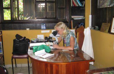 volunteer animal rescue center
